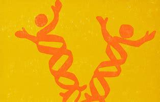 Bio-ethics and Genetic Engineering essays
